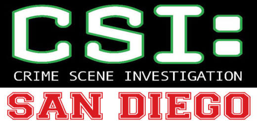 stuffchannel-csi-san-diego-300